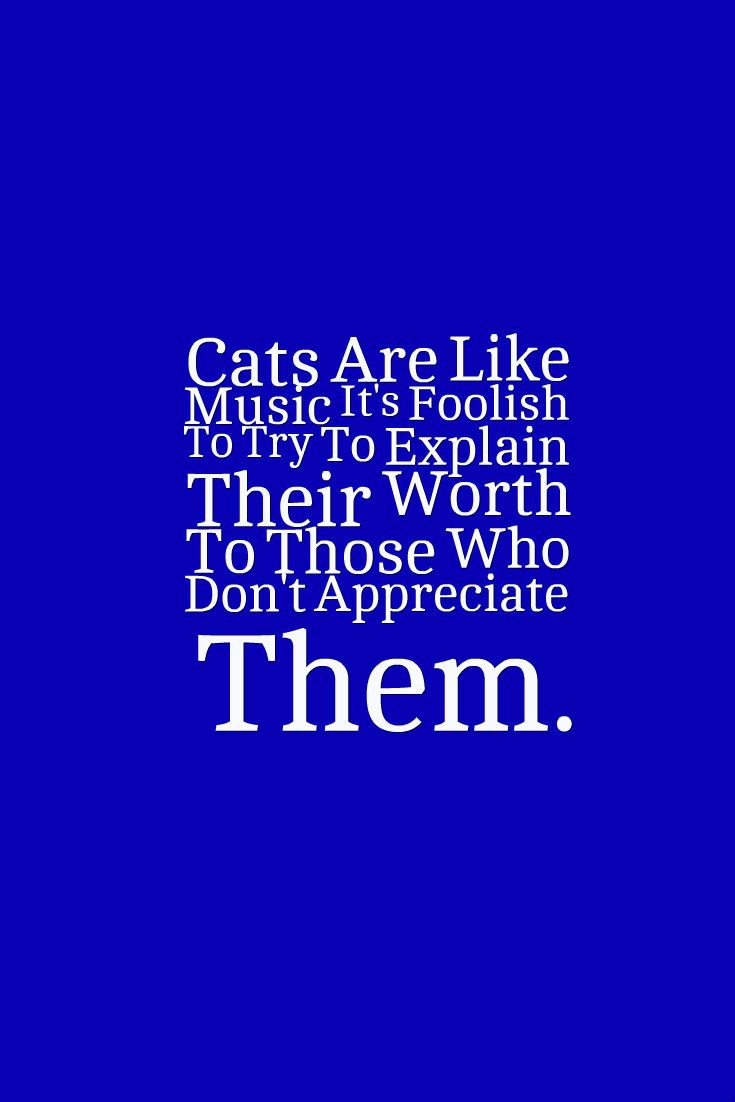 Cats Are Like Music It's Foolish To Try To Explain Their Worth To Those Who Don't Appreciate Them.