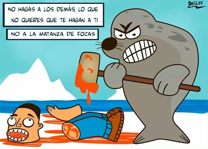 Caza focas