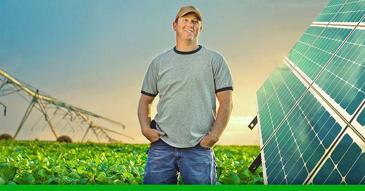 Linhas de financiamento para aquisição de usina solar fotovoltaica mais facilitadas anima produtores rurais que pensam em investir nessa tecnologia.