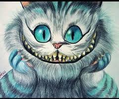 Resultado de imagen para gato rison                              …