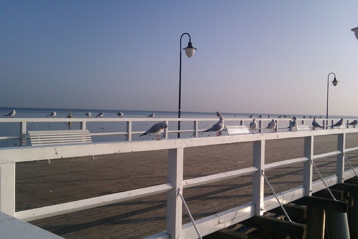 #morze, #sea, sun, rano, #morning, #molo, #Gdynia, #Orłowo