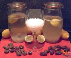 Preparación y cultivo de los tres tipos de kéfir, de leche, de agua y combucha, con proporciones