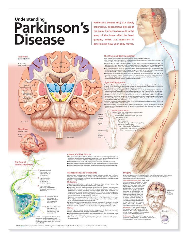 Understanding Parkinson's Disease~good to know this b/c my grandpa has Parkinson's.  <3