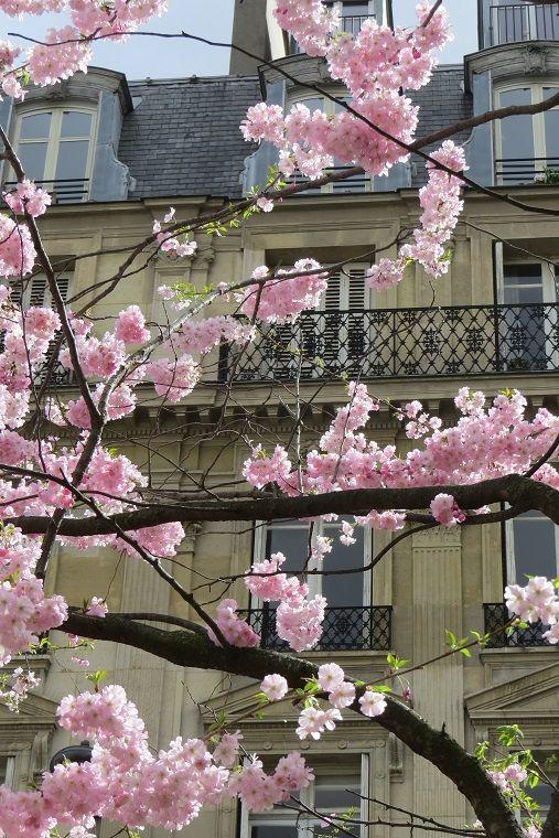 Paris - Spring