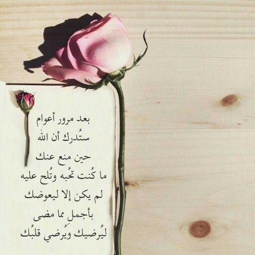 DesertRose/// Yaa Allah