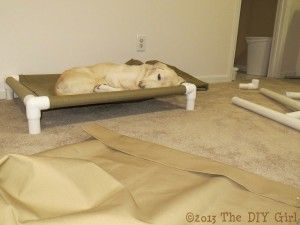 This dog bed. | 20 PVC Pipe Ideas to Use Around the House