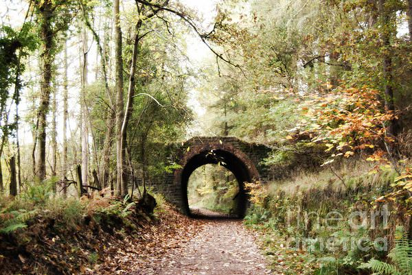 Drybrook Road Station, Forest of Dean, England