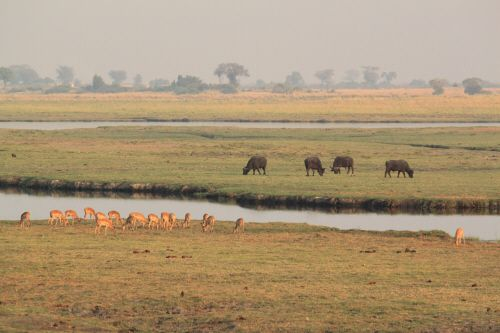 Overland to Central Kafue Part 1