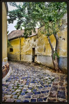 Painting of a Village Alley in Szentendre, Hungary