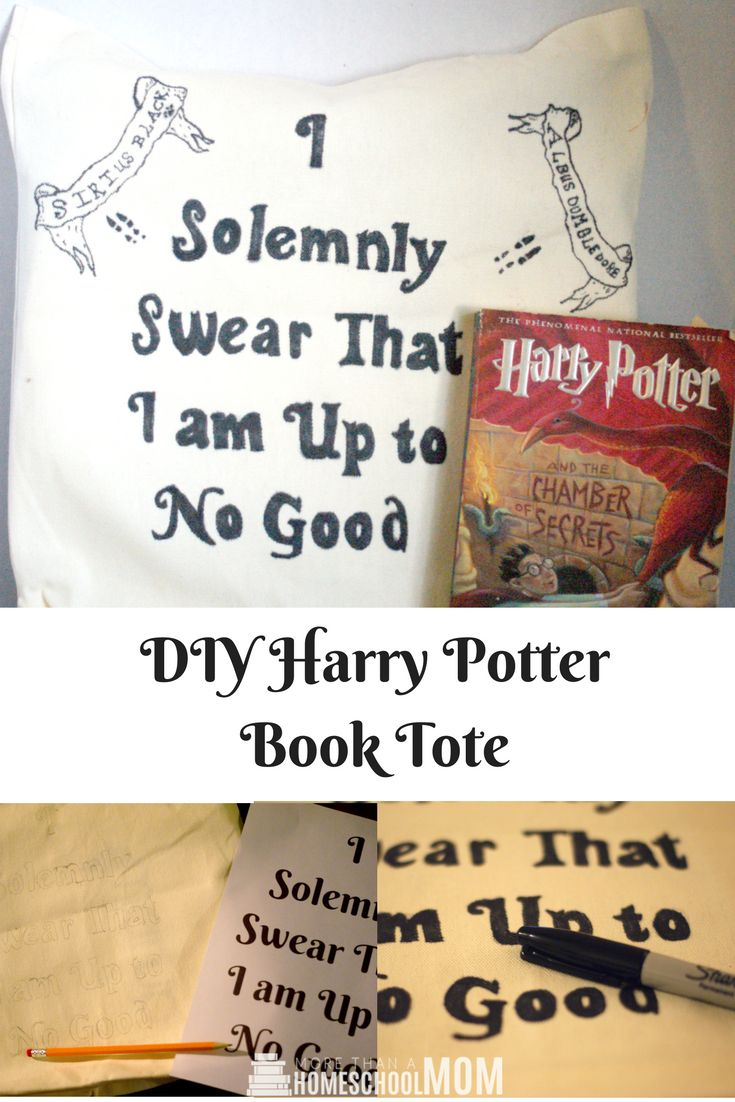 Eat Fried Worms How Diy Harry Potter Book Tote