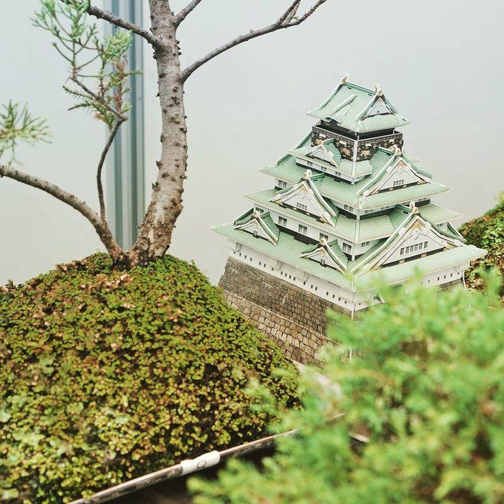 El Castillo de Osaka juntos con los 🌲#bonsai más hermosos y bellos de @mallelbonsai #paisajista #jardin 📷fotografía tomada en @hogarboulevard #hogarboulevard por #cubicfunclub #cubicfun