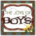 The Joys of Boys - A Blog for Moms of Boys: Activities, recipes, DIY, Science projects and Crafts for Boys.