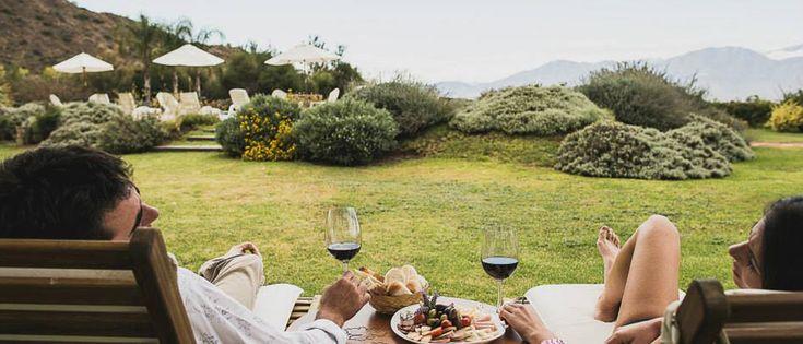 ¡Feliz San Valentín! ¿Con quién te gustaría estar en este hermoso viñedo en #Salta #Argentina? #viñedos #vinos #bodegas #gourmet #experiencias #sanvalentin #romantico #lunademiel #lugaresincreibles #lugares #paisajes #verde #naturaleza