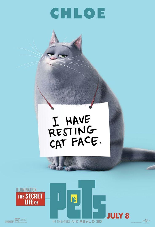 7 best Pets images on Pinterest | Secret life of pets, The secret ...