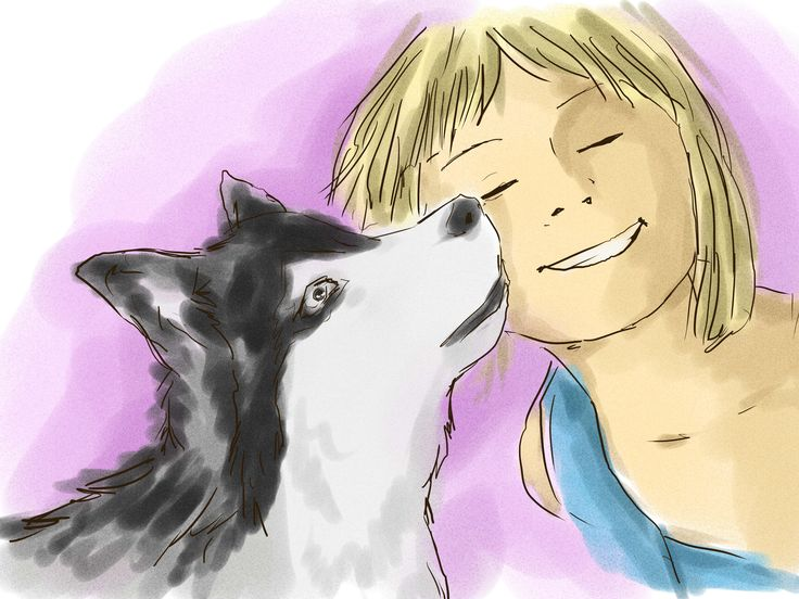 How to Train and Care for Your New Siberian Husky Puppy -- via wikiHow.com