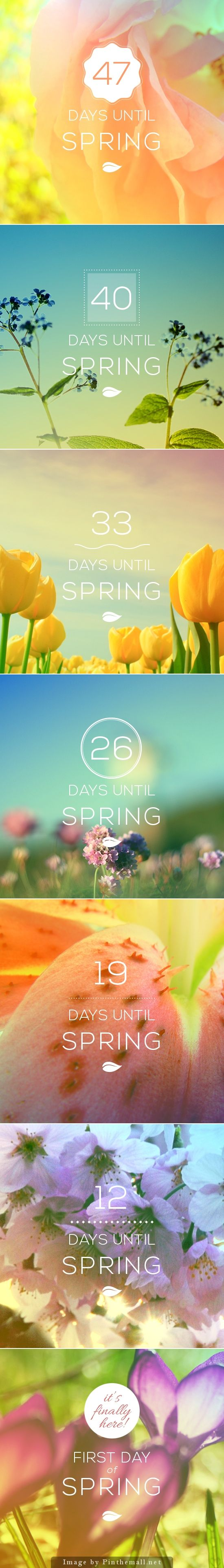 Countdown to Spring by Chris Sims