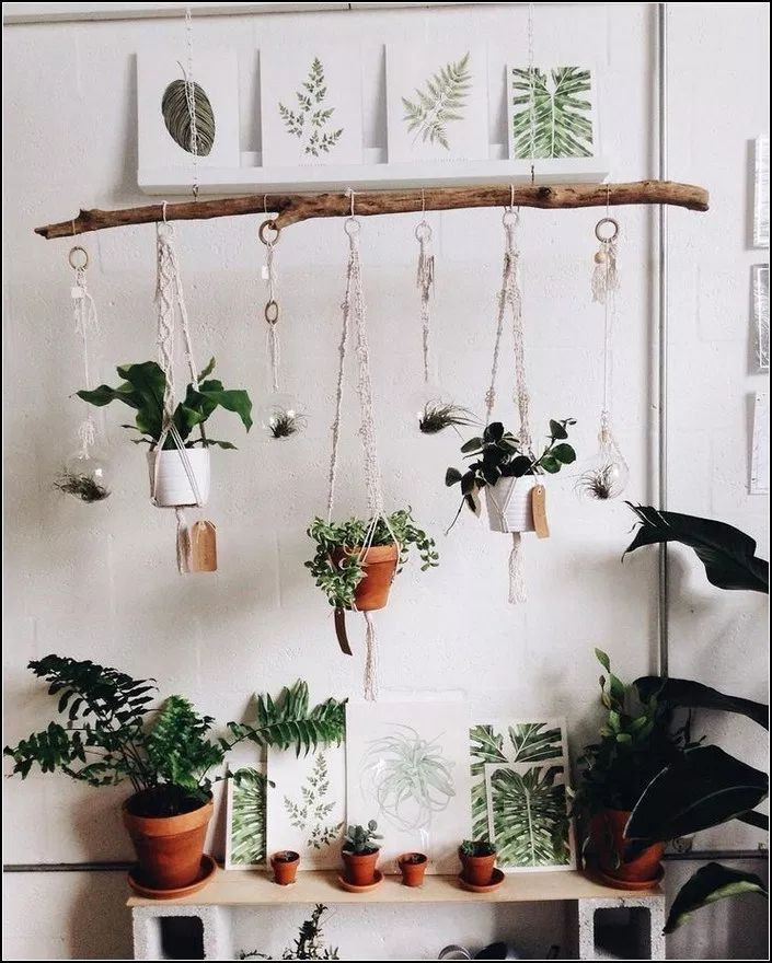 137 Indoor Hanging Plants Ideas To Decorate Your Home 32