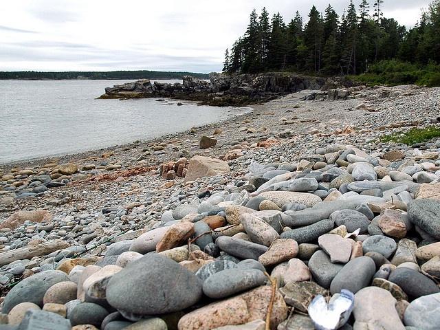the beach, Seal Harbor ME