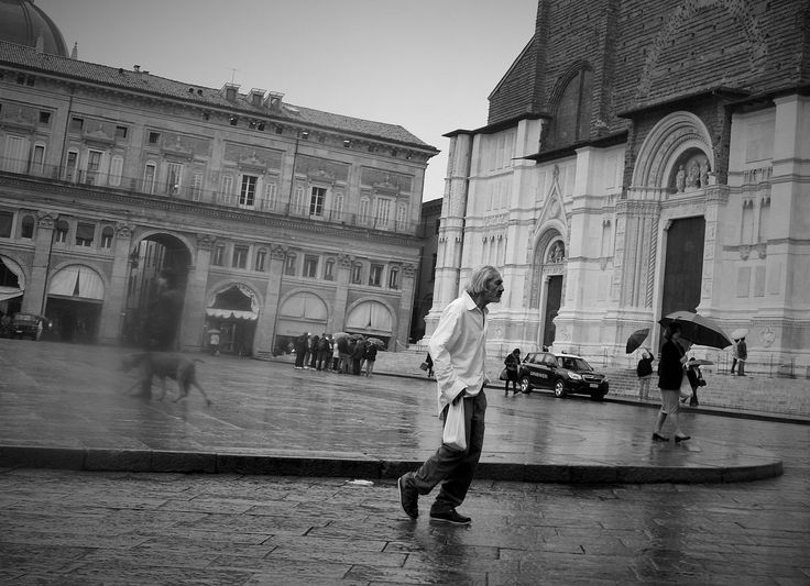 "https://flic.kr/p/GEBccw | ""The ghost dog"" 