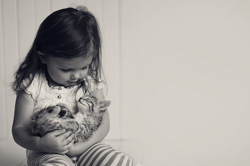 oh. my. goodness!: Little Girls, Best Friends, Kids Portraits, Furry Baby, Cat And Kids, Baby Girls, Baby Photo, Baby Kitty, White Kittens