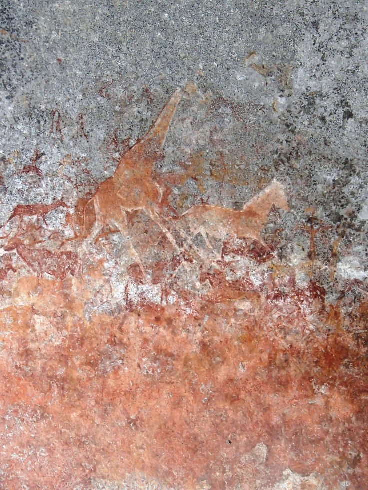 Chutes Victoria: 189 Best Images About Cave Art And Rock Painting On
