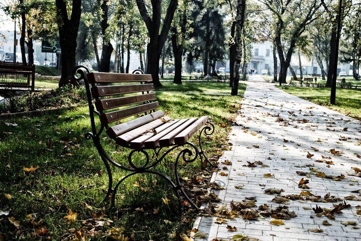 """Skobrák András """"Egy levél a földre hull Lassan már alkonyul És nemsokára Az őszi tájra Sötétség borul  Még bágyadtan int a Nap A tékozló sugarak Emlékekből Képzeletből Elém rajzolnak (...)"""" (Ákos: Őszi tájkép) Több kép Andrástól: https://www.flickr.com/photos/106287128@N03/"""