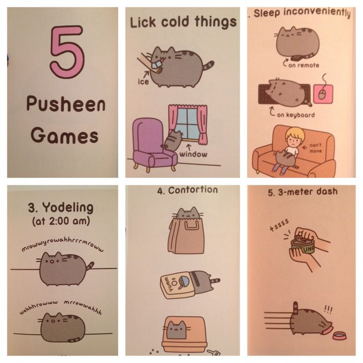 5 Pusheen Games 1) lick cold things  2) sleep inconveniently  3) yodeling at 2 AM  4) contortion  5) 3 - meter dash