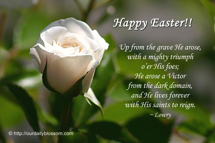 Happy Easter!! Up from the grave He arose, With a mighty triumph o'er His foes, He arose a Victor from the dark domain, And He lives forever, with His saints to reign. ~ Lowry.