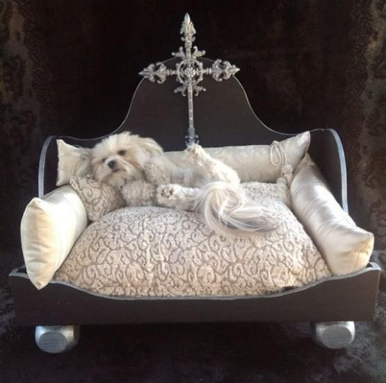 20 Modern Pet Beds Design Ideas For Small Dogs Two Paws