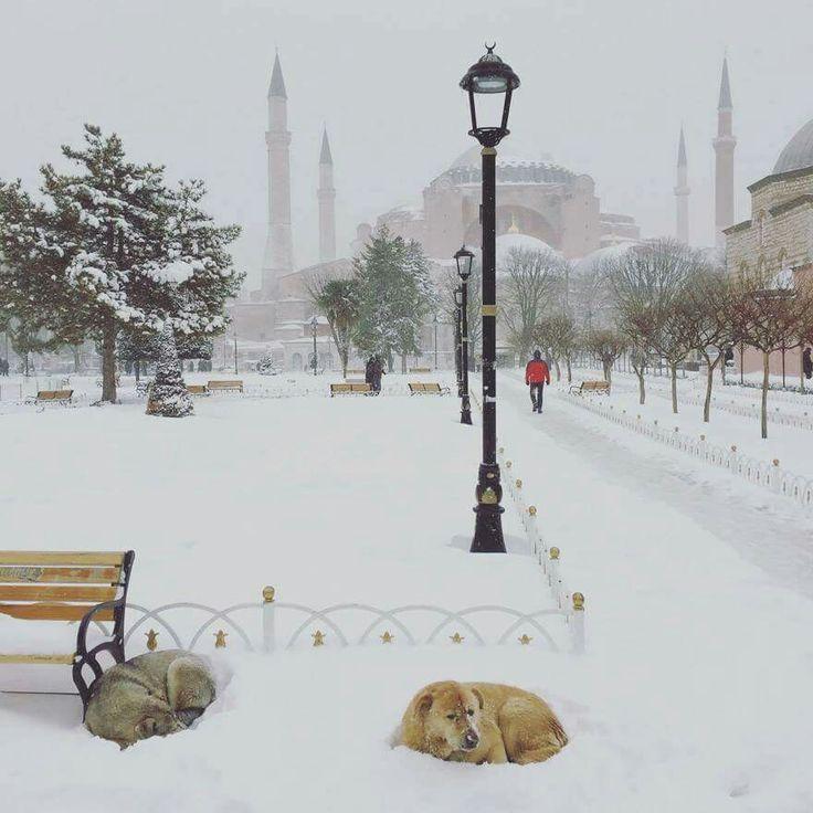 Sultanahmet ---İSTANBUL