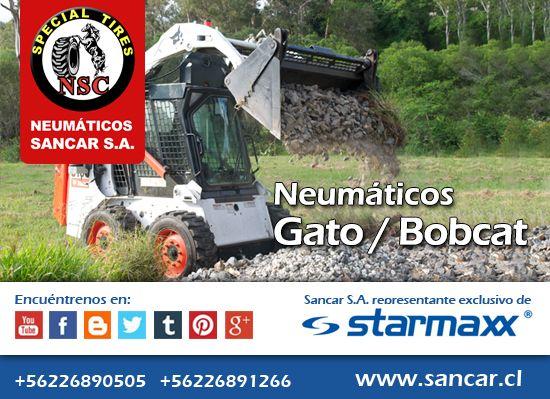 Bobcat / Gato / Minicargador sm-125 pronto: sm 135  Neumáticos Industriales Starmaxx SM 125 de alto rendimiento en tracción.  Función de auto-limpieza. Mayor vida útil y comodidad sobre superficies duras.   Representante Exclusivo en Chile de Starmaxx Neumáticos Sancar, Todos en un solo lugar. http://www.sancar.cl/ | ventas@sancar.cl | +56226890505 | +56226891266