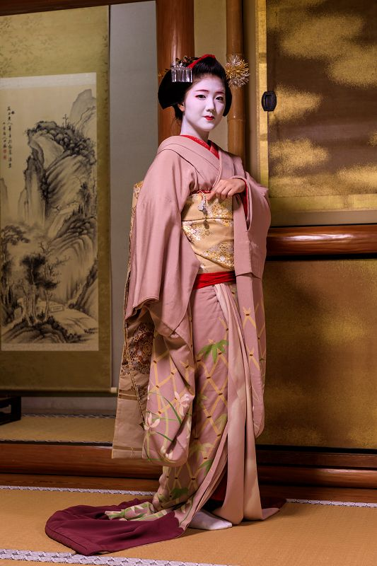 Maiko, Katsuna. Kyoto. Japan. She ended the maiko in May 2017. (Maiko is only from 15 to 20 years old) This picture is from the last photo session she is wearing a kimono of Maiko.