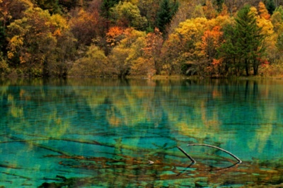 tumblr Gallery: Flower Lakes, Clear Water, Favorite Places, Valley National, Beautiful Places, National Parks, Crystals Clear, Jiuzhai Valley, China