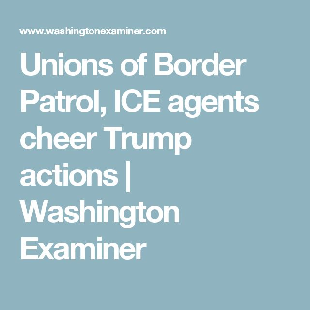 Unions of Border Patrol, ICE agents cheer Trump actions | Washington Examiner