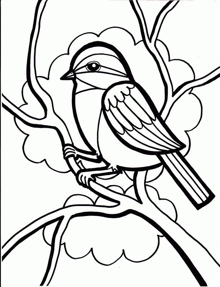 bird coloring page coloring pages gallery 4 - Bird Coloring Book