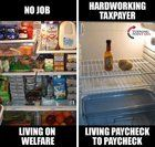 FWD: WELFARE QUEENS ARE DESTROYING AMERICA (imgur.com) submitted by WalrusGriper to /r/forwardsfromgrandma 31 comments original  view this album at imgur.com - Weird and #Funny Internet #Humor - Cringeworthy Laughter - Creepy and Weird LOL Jokes - Social Media Memes from Facebook and Twitter - Trashy Dark Odd and Embarrassing #Comedy - Strange Photos and Cartoons by iMakeMerch