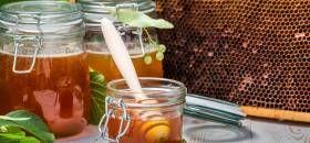Miód lipowy – skład, właściwości i zastosowanie