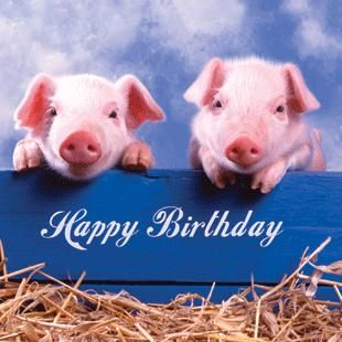 birthday+greetings+with+pig+animals | ... Cards ⁄ Birthday ⁄ Art & Photographic ⁄ Pigs Happy Birthday Card