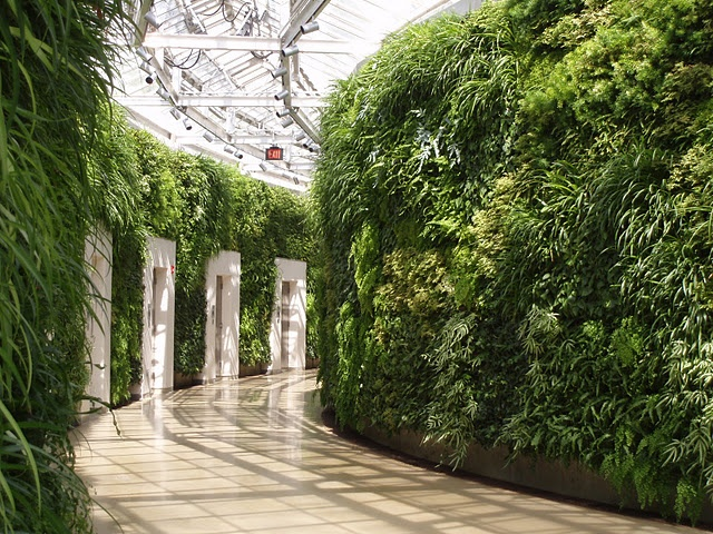 17 best images about green walls on pinterest gardens for Landscaping longwood