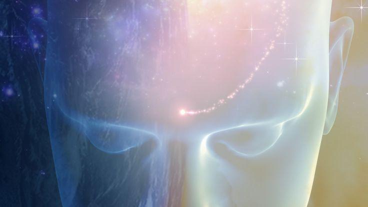 2-kinds-of-consciousness.jpg (800×450)