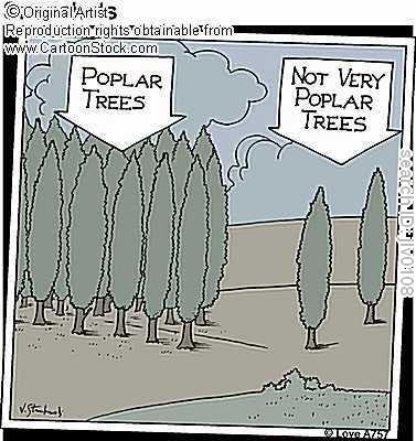 LOLLonely Trees, Trees Truths, Gardens Gnomes, Poor Trees, Unpoplar Trees, Giggles