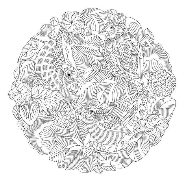 Millie Marotta Milliemarotta Instagram Photos And Videos Millie Marotta Coloring Book Dragon Coloring Page Coloring Book Art