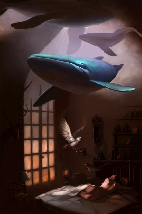 sonho baleias