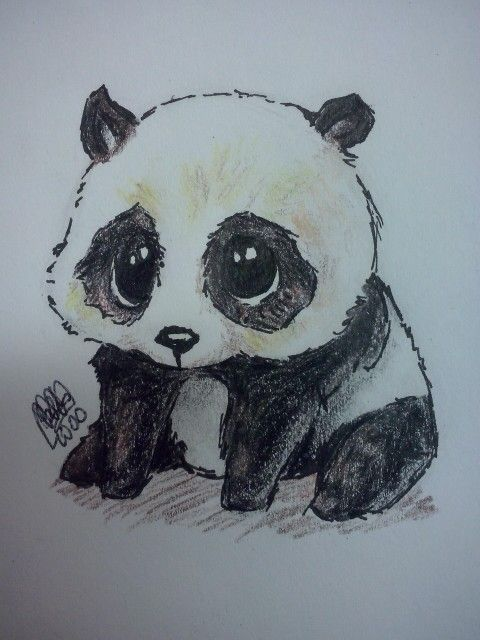 Panda dibujo_drawing #Panda #cute