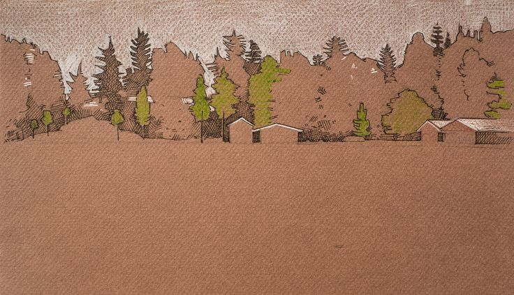 #nature #forest #trees #micron #pen #pencils #coloredpaper #sketch