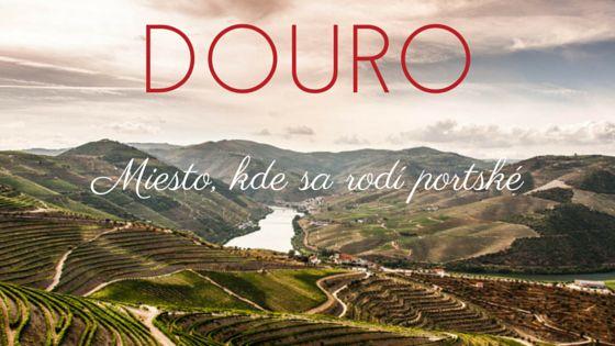 Douro - Miesto, kde sa rodí portské vino-port.sk