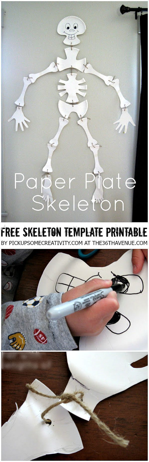 Halloween Crafts - Paper Plate Skeleton and Free Skeleton Template Printable at the36thavenue.com