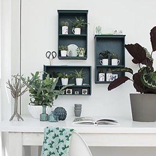 Zo gepiept: tover oude lades om in leuke hangkastjes en vul ze met kleine planten. #diy #zelfmaken #doehetzelf #knutselen #wonen #interieur