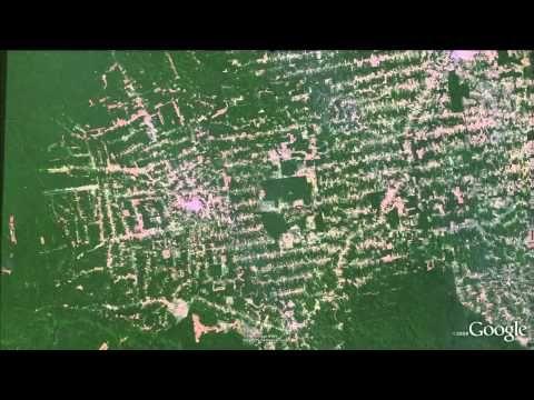 http://www.hir24.hu/zoldblog/2013/11/15/rakapcsoltak-az-esoerdoirtasra/ Újra hatalmas méretűvé válik Brazíliában az erdőirtás. Ez aggasztó, hiszen Brazíliában található a Föld tüdeje.