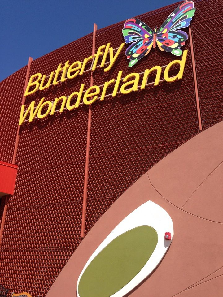 I want to go sooo bad! !!! How cool - a museum all about butterflies!